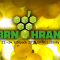 Pozvánka: Přijďte si zahrát na Brnohraní 2019