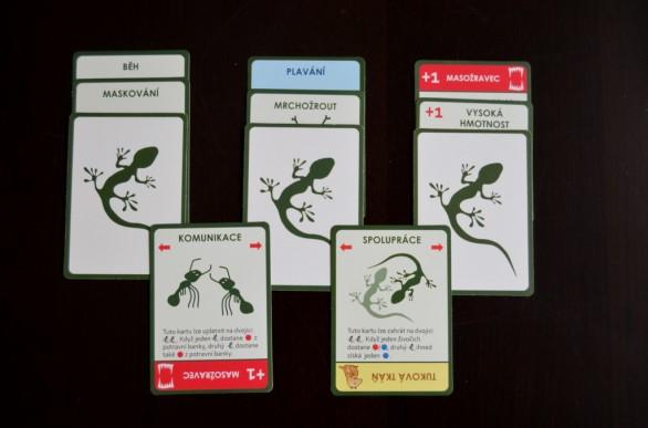Evoluce-karty
