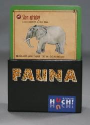 Fauna-krabička-karta
