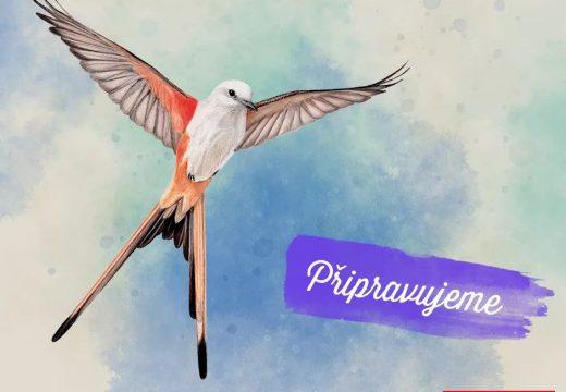 MindOK vydá hru Wingspan, plnou krásných ptáčků